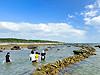 2010世界海垣サミットin白保