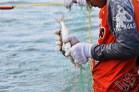 白保海垣体験2010