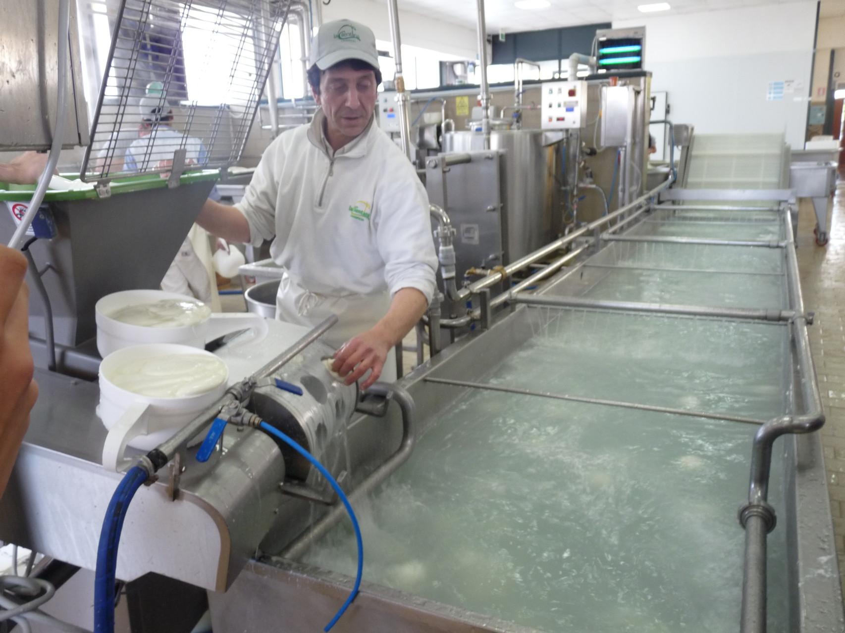 Visite d'une fabrique de mozzarella près de Naples