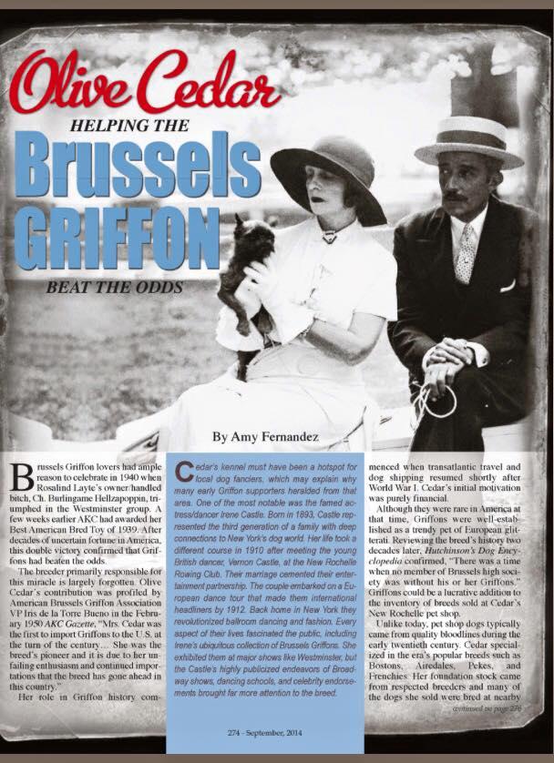 Sehr interessanter Artikel über Frau Olive Cedar, was war die erste in importieren Grifones nach den USA gegen Ende des neunzehnten Jahrhundert