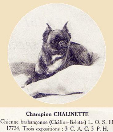 Chalinette - 1926