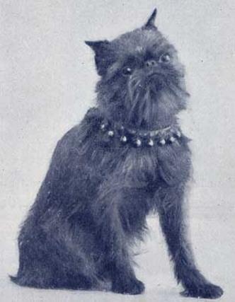 Lily du Bois de Beauséjour - 1914