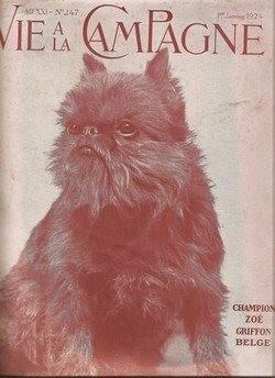 1924 Champion Zoe. Griffon Belge.