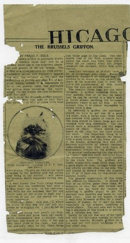 Newspaper Clipping Chicago Daily News 1918