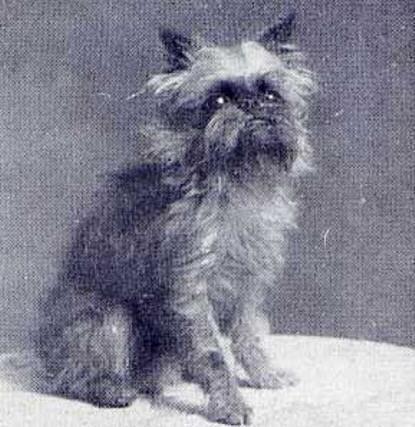 Marouf - 1926