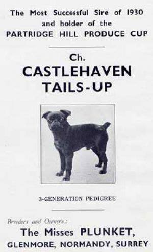 CASTLEHAVEN TAILS UP 1925
