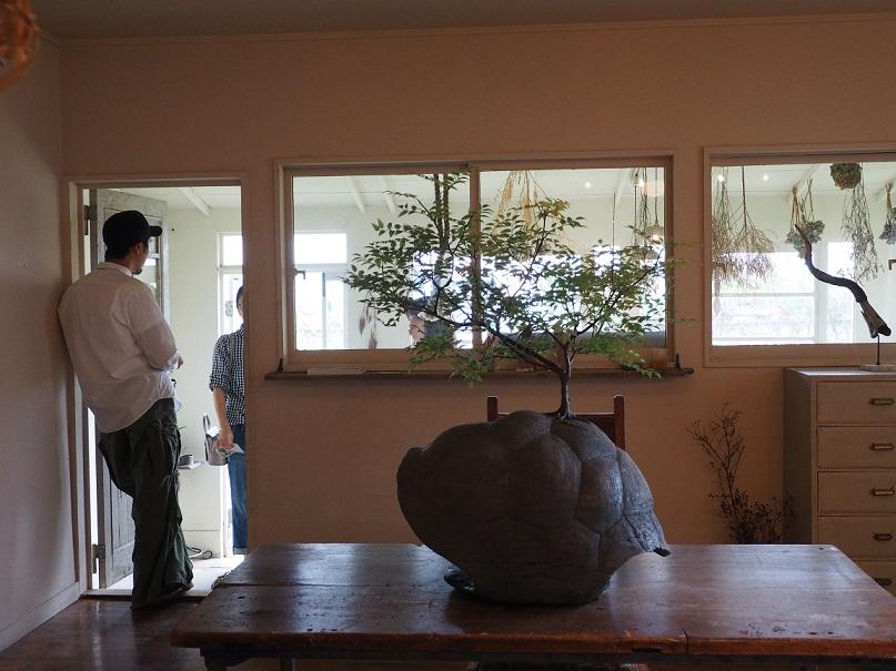 2015/8/22-9/5 「日々のくらし展」 アトリエ 福生