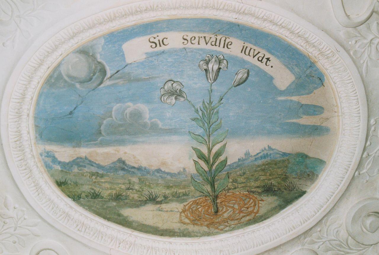"""12) Eine weiße blühende Lilie, um deren Fuß Dornen gelegt sind: """"SIC SERVASSE JUVAT"""" (Es gefällt, so bewahrt zu sein)."""