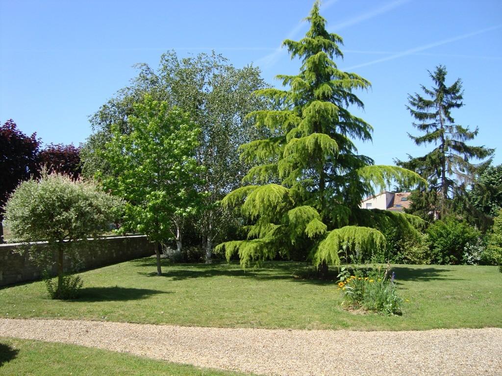 Un petit coin du jardin paisible, propice à la détente