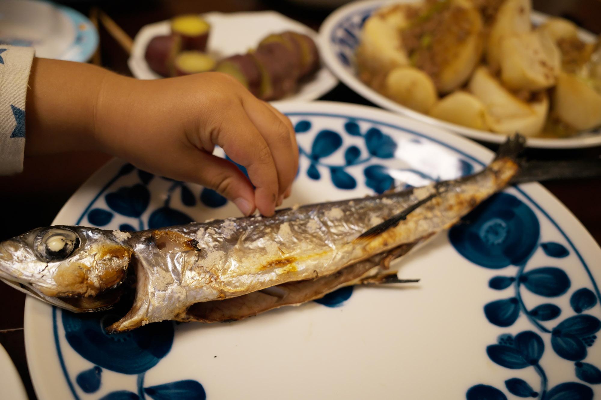 飛び魚を食う