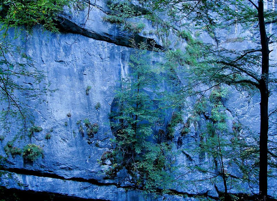 Bild: Seele - Felswand SEO (Suchmaschinenoptimierung)
