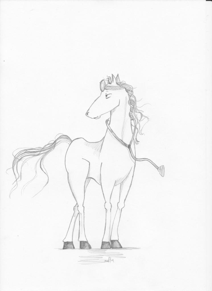 """""""Pferde-Arzt"""""""