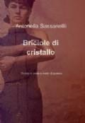 Briciole di cristallo - A. Sassanelli