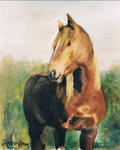 Lindseys Pferd