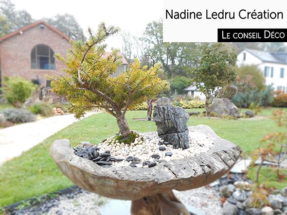 composition - jardin miniature d'extérieur