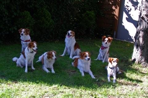 hinten: Atego, Ayko, Azra, vorne Anouk, Mama Aysha, Arrigo und Alina