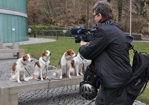 5 Kromis werden interviewt für einen Beitrag bei WDR Aktuell Düsseldorf