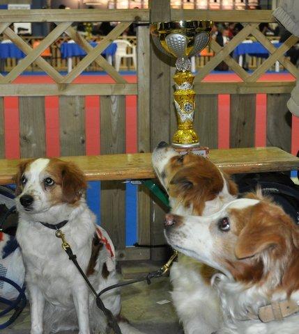 am Ehrenring mit riesen Pokal
