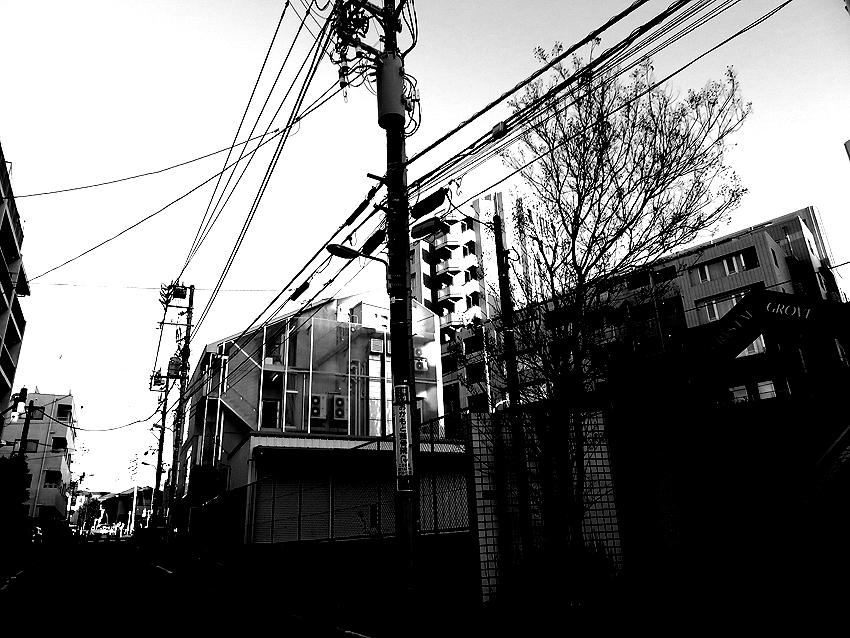 世田谷写真 #199