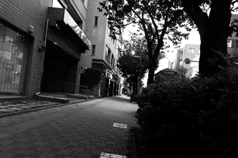 世田谷写真 #330