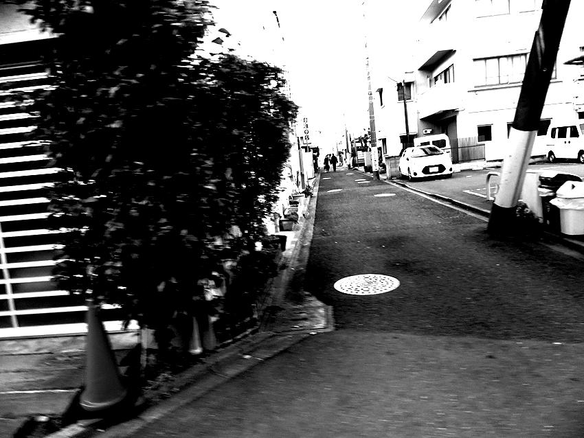 世田谷写真 #142