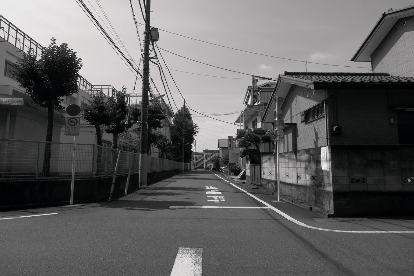 世田谷写真 #277
