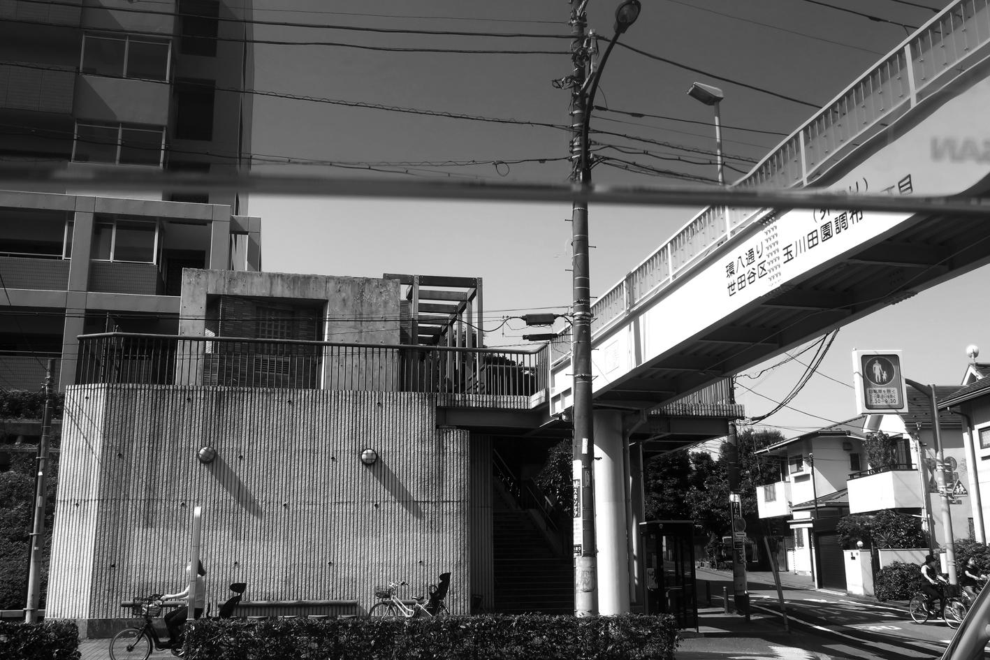 世田谷写真 #235