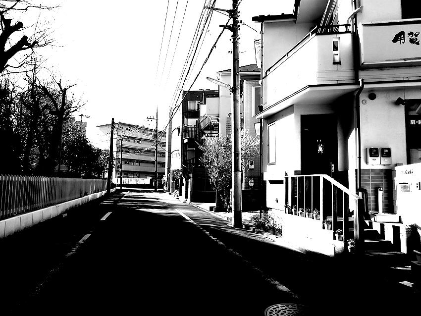 世田谷写真 #162