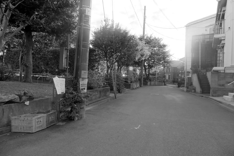 世田谷写真 #347