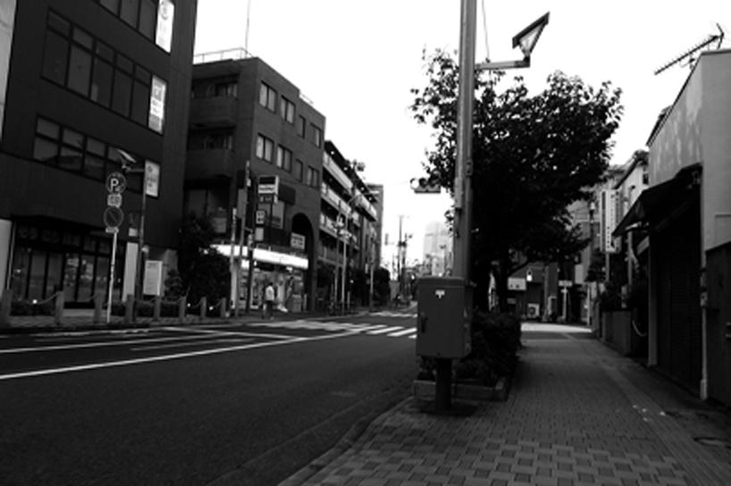 世田谷写真 #265