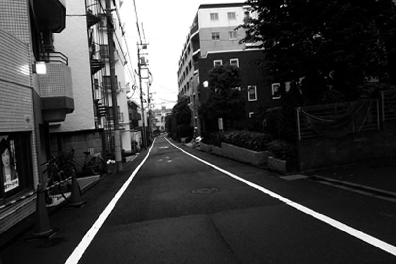世田谷写真 #274