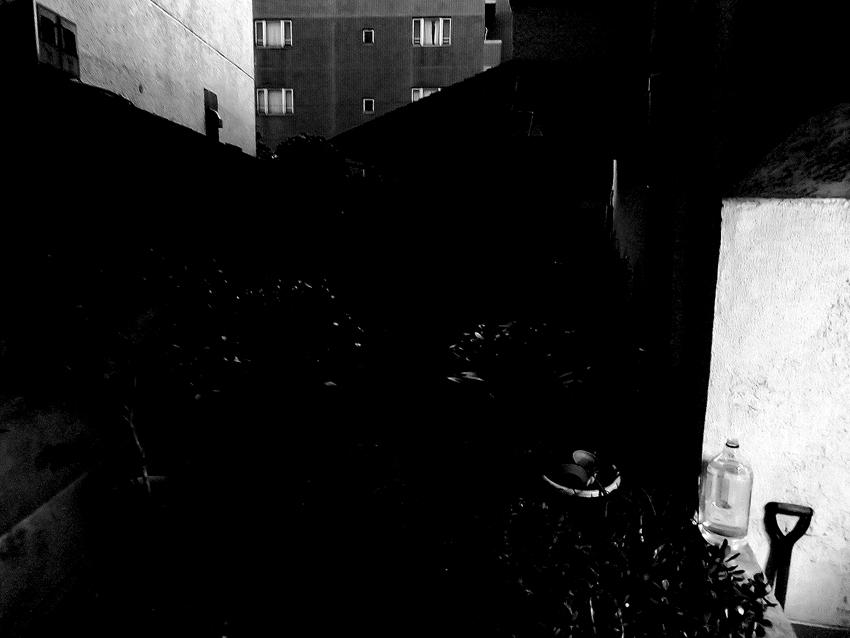 世田谷写真 #92