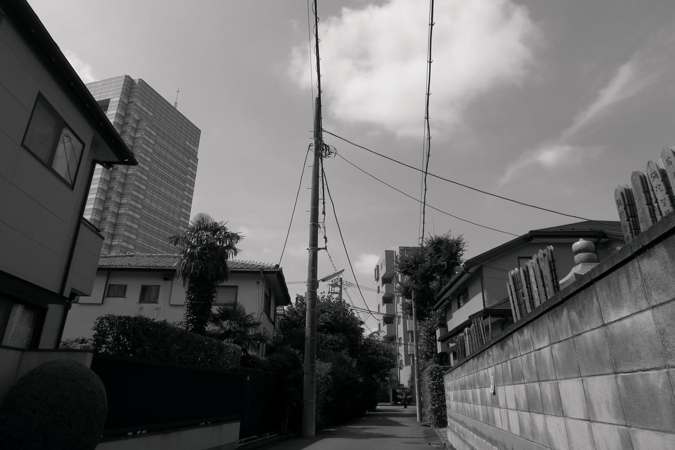 世田谷写真 #328