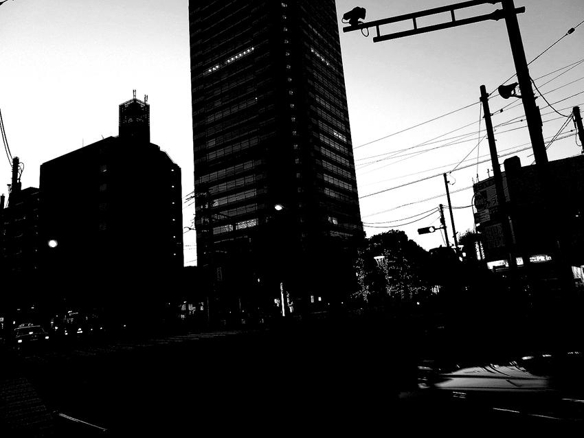 世田谷写真 #91