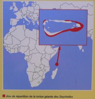 Répartition des Tortues Géantes Des Seychelles