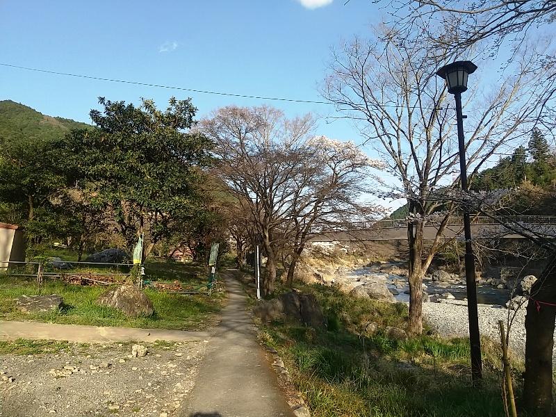 すぐ下は多摩川遊歩道
