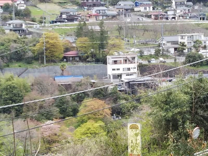 多摩川の反対側をたどる古道から、沢井マウンテンカフェの赤い屋根が見えます(中央白いビルの左奥!)