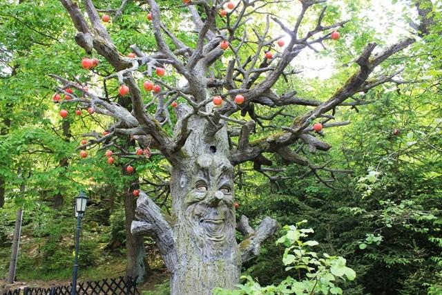 Freizeitpark Plohn - Sprechender Baum