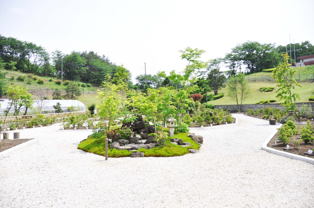 입구로 들어가면 가장 먼저 눈에 들어오는 미니 정원입니다.