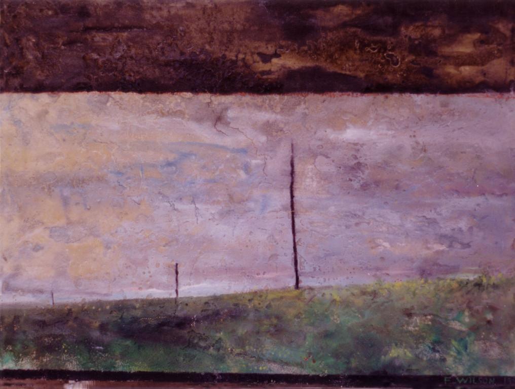 Hierba húmeda tras la lluvia 1993