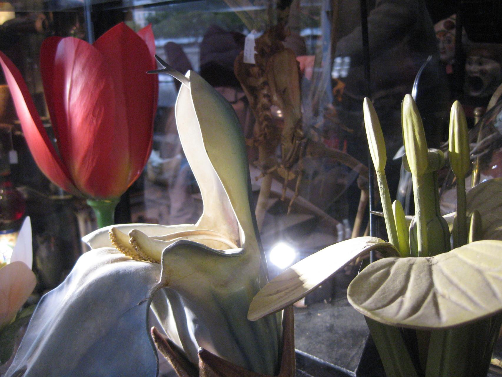 fleurs didactiques Brendel