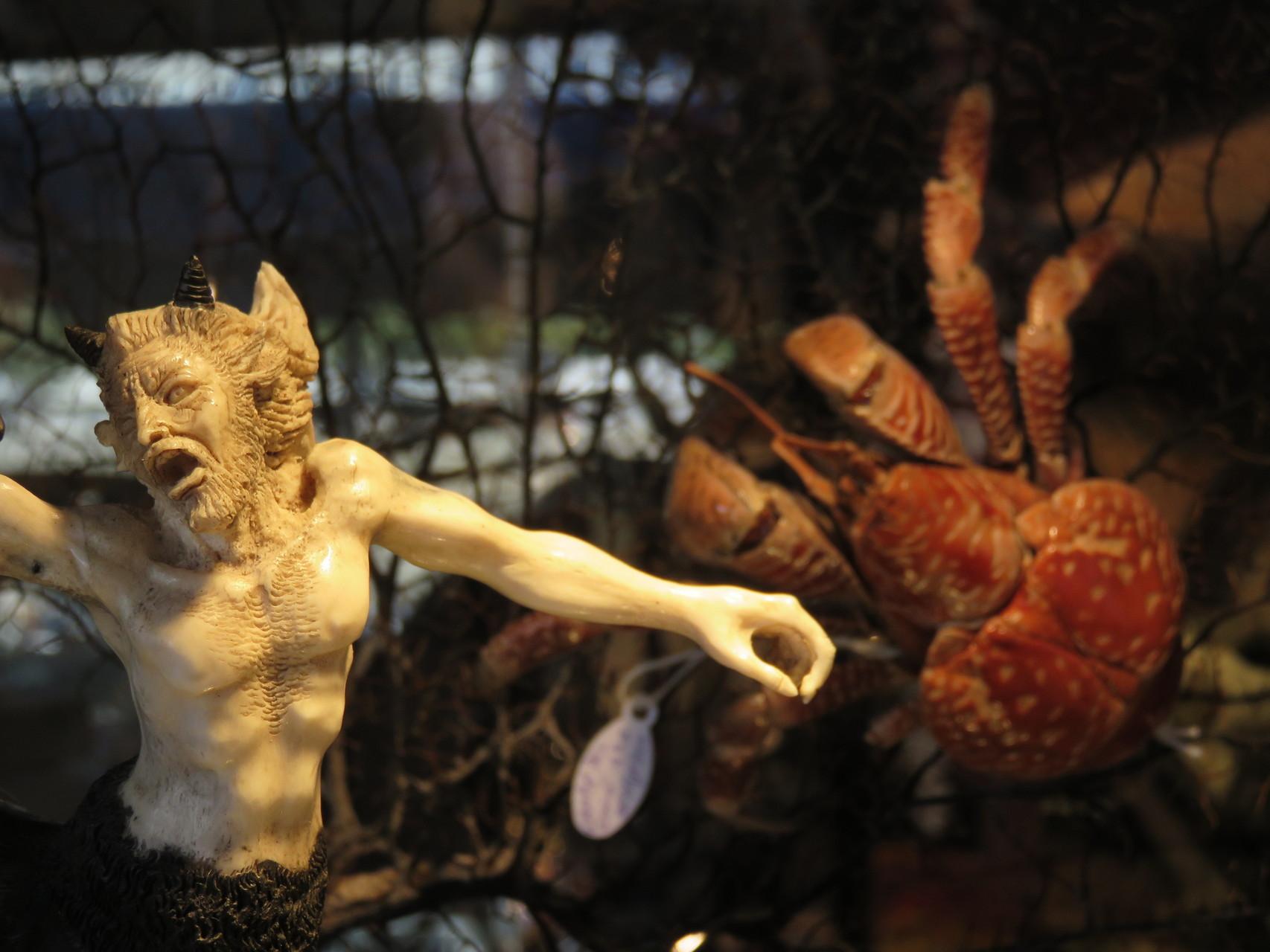 rare objet de vitrine centaure en bois de renne et crabe des cocotiers