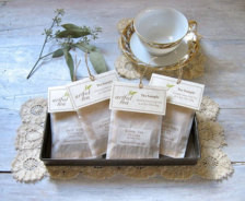 Marketing Kit Teabag Cover