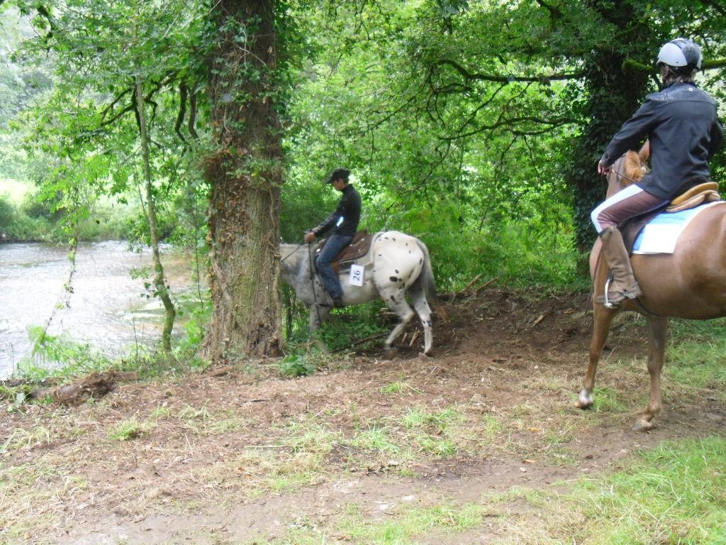 On remet les chevaux en route avant le deuxième parcours,