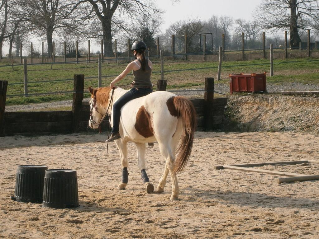 Echange de chevaux...intéressant!