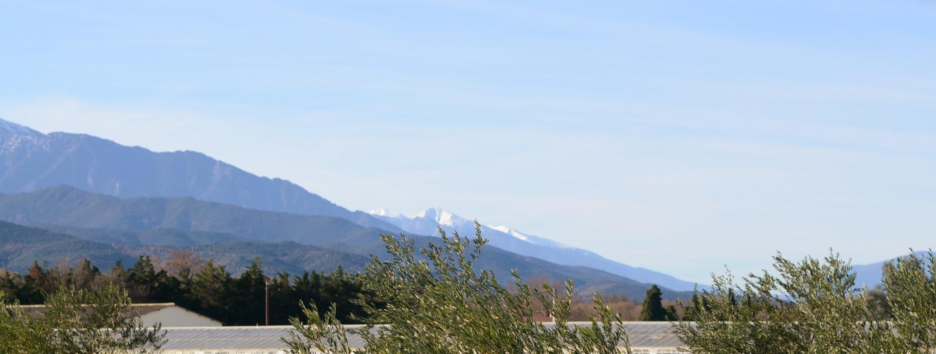 Massif du Puigmal (Cerdagne), 20 décembre