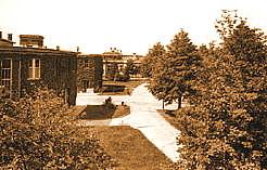 Structure pavillonnaire des unités