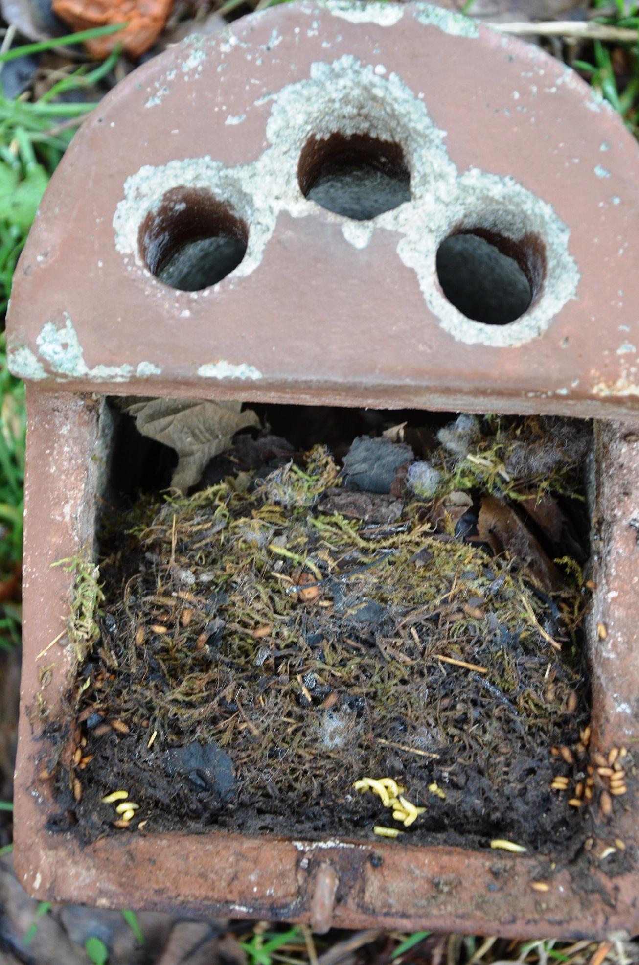 Die Nistkästen werden gewartet, gereinigt und ihr Inhalt auf Milben untersucht.