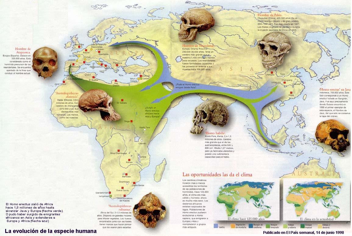 Evolución y expansión de la especie humana