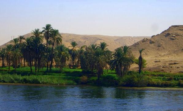 El Nilo Oasis.